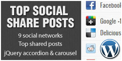 Top Social Share Posts WordPress Plugin